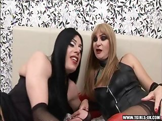 Shemale and transsexual fucking